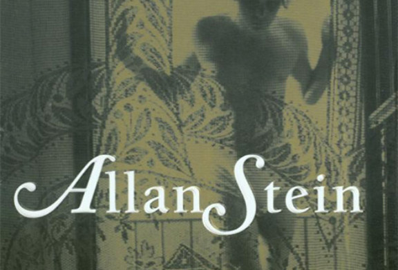 """The personal becomes historical in Matthew Stadler's """"Allan Stein"""""""