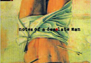 Notes on a Desolate Novel